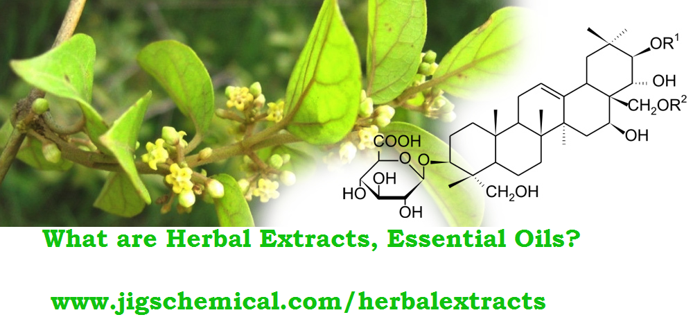 What are Herbal Extracts, Essential Oils and How They Are Useful